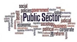 public sector 1